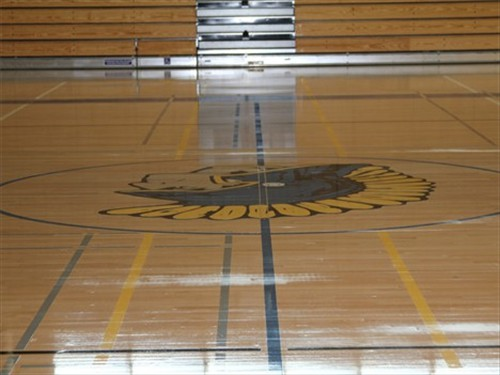 basketball half court in gym